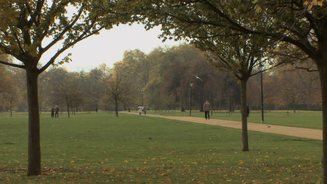 ws people walking in hyde park / london, uk. - hyde park london stock videos & royalty-free footage