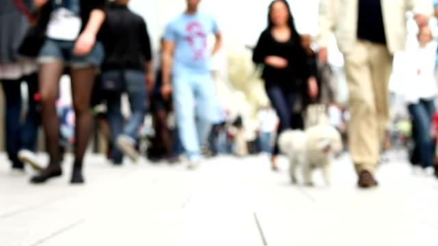 people walking in shopping street (defocused) - shopping basket stock videos and b-roll footage