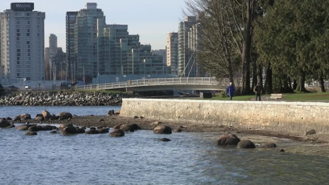 ws zo people walking in stanley park next to beach with skyline behind / vancouver, british columbia, canada - solo uomini maturi video stock e b–roll