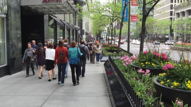 people walking in the downtown of chicago, illinois, usa - chicago illinois stock videos & royalty-free footage