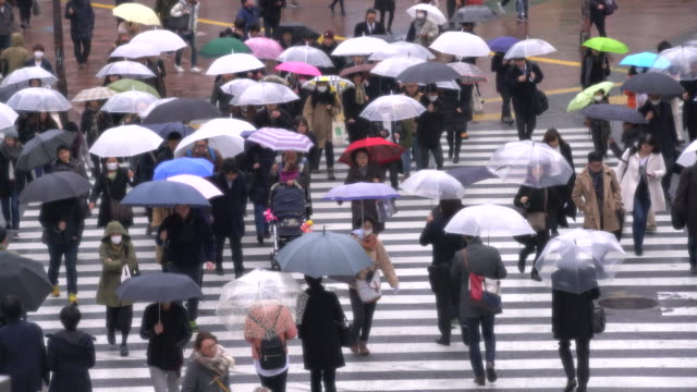 WS TL People walking in the rain, Tokyo, Japan