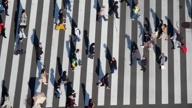 people walking on a crosswalk at crossing ginza intersection , slow motion - zebra crossing stock videos & royalty-free footage