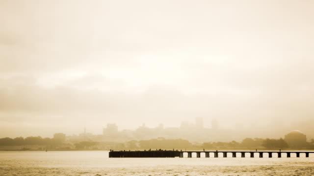 ws zi t/l people walking on fishing pier in foggy san francisco bay/ san francisco, california - okänt kön bildbanksvideor och videomaterial från bakom kulisserna