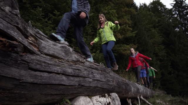 people walking on log, medium shot