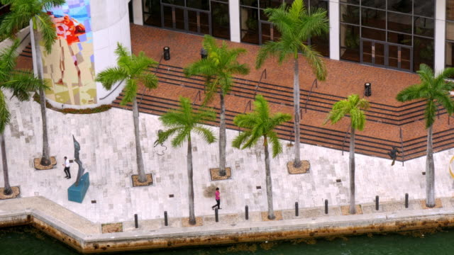 people walking on miami river greenway under palm trees next to miami river. view from above - spoonfilm stock-videos und b-roll-filmmaterial