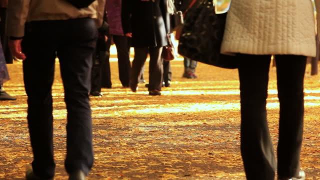 MS People walking on road / Minato, Tokyo ,Japan