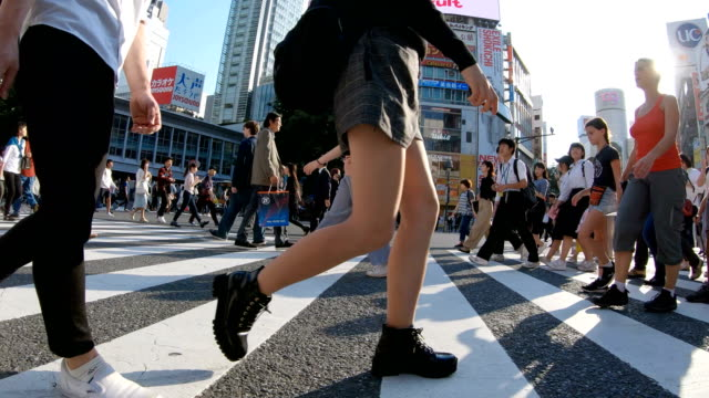 vídeos de stock e filmes b-roll de 4k people walking on shibuya crossing road. - atividade móvel