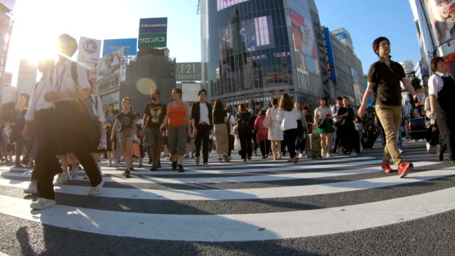 vídeos de stock e filmes b-roll de 4k people walking on shibuya crossing road. - caminhada