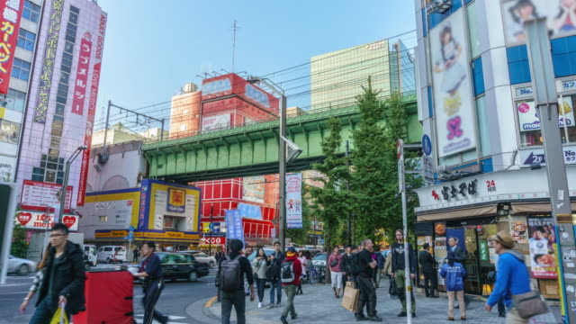 WS T/L ZO: 人々 は通りと交差道路で秋葉原を歩く/東京