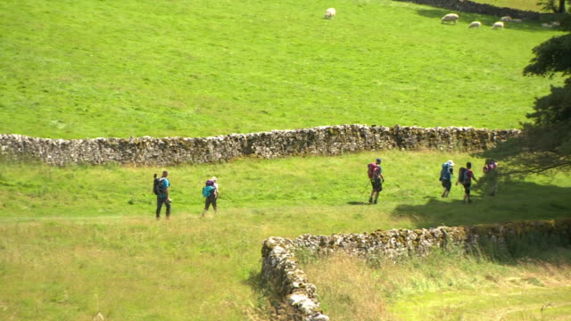 people walking through the yorkshire dales - natural parkland stock videos & royalty-free footage