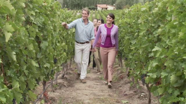 stockvideo's en b-roll-footage met people walking through vineyard - argentijnse etniciteit