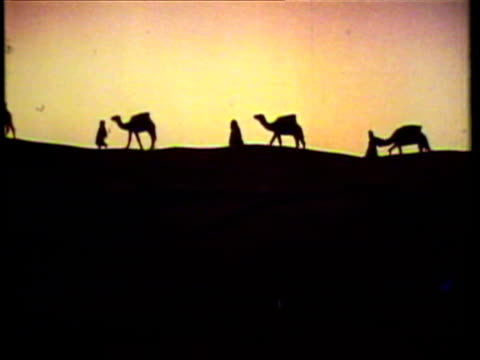 1953 ws people walking with camels silhouetted in the dessert / saudi arabia / audio - saudi arabia stock videos and b-roll footage
