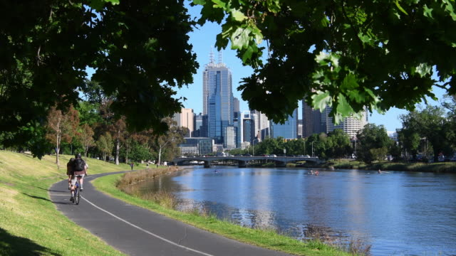 people walk/ride along the bike track that runs along the yarra river on november 11, 2016 in melbourne, australia. - サイクリングロード点の映像素材/bロール