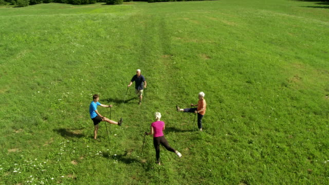 hd: people warming up for nordic walking - pole stock videos & royalty-free footage