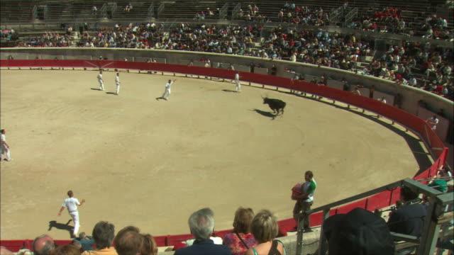 ws pan people watching bullfight / nimes, languedoc, france - bullfighter stock videos & royalty-free footage