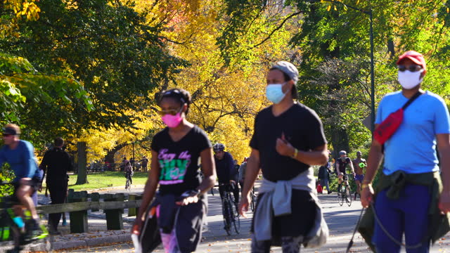 people wearing the face mask walk, run and cycling in central park among autumnal trees nyc. - tree trunk stock videos & royalty-free footage