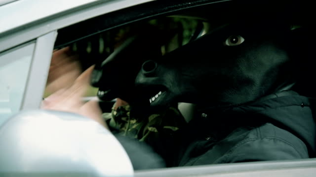 people with horse head mask in the car - animal head stock videos & royalty-free footage