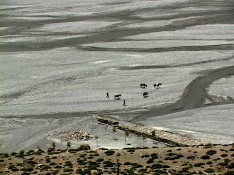 vidéos et rushes de ws, zo, people with horses walking along river in himalaya mountains, mustang-himalaya, nepal - quatre animaux