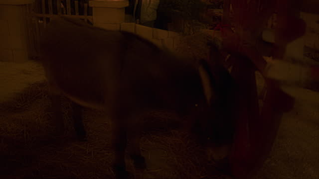 stockvideo's en b-roll-footage met people with traditional clothes take part in the annual living nativity scenes in squinzano italy on december 30 2019 - kerststal