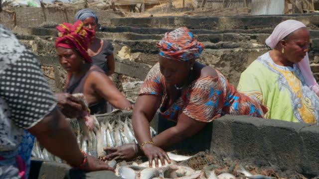 vídeos de stock, filmes e b-roll de people work at a fish smoking facility in senegal - indústria da pesca