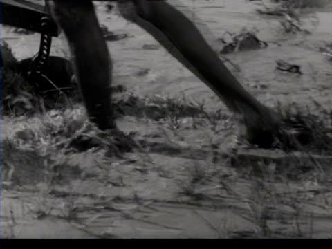 stockvideo's en b-roll-footage met people working in paddy fields / suriname - werkdier