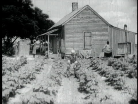 vidéos et rushes de 1940 ws people working in rows of kitchen garden / unknown - cahute