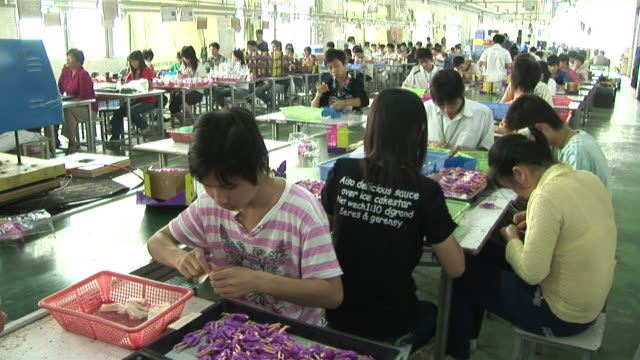 MS, HA, People working in toy factory, Dongguan City, China