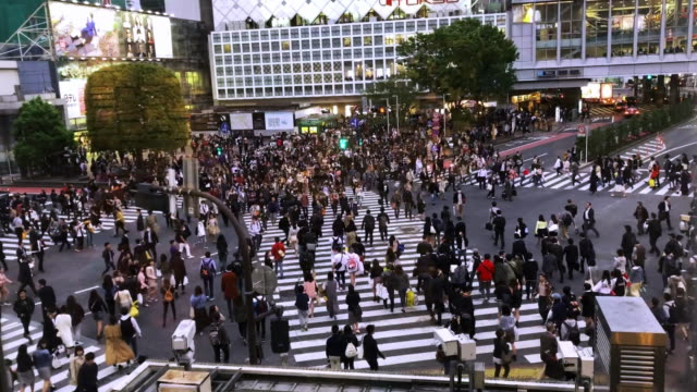 stockvideo's en b-roll-footage met steek de straat bij shibuya doorkomst in tokyo over volkeren - shibuya shibuya station