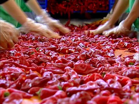 vidéos et rushes de poivre - piment
