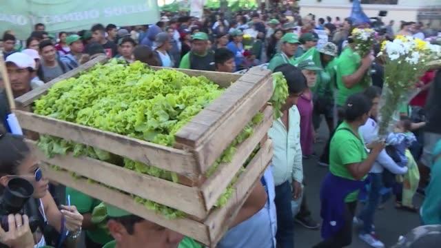 stockvideo's en b-roll-footage met pequenos productores agricolas regalaron el miercoles 20 toneladas de verduras en el centro de buenos aires en protesta por la mala situacion... - agricultura