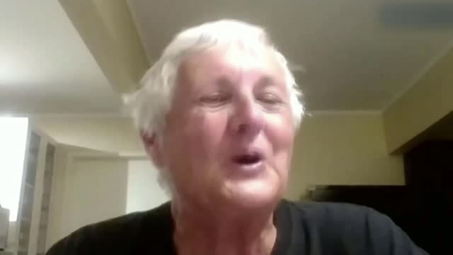 peregrine falcon nest in wakefield drawing attention from bird watchers across the world; australia : int lindsey rea interview via internet sot... - bird of prey stock videos & royalty-free footage