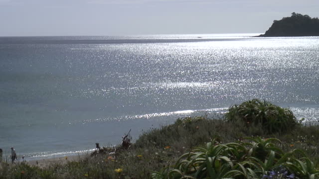(HD1080i) Perfect Beach Walk Past Sparkling Waters