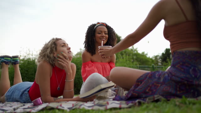 perfect day for a picnic with friends and good book - picnic stock videos & royalty-free footage
