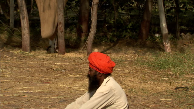 a performer slices a vegetable with a sword on a man's turban in anandpur sahib, india. - turban stock videos & royalty-free footage