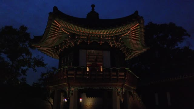 performer wears a traditional costume and play traditional music during a moonlight tour at changdeokgung palace, amid the coronavirus pandemic on... - ポピュラーミュージックツアー点の映像素材/bロール