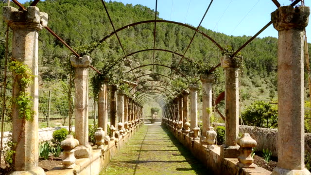 pergola trick fountains of alfabia gardens / majorca - classical stock videos & royalty-free footage