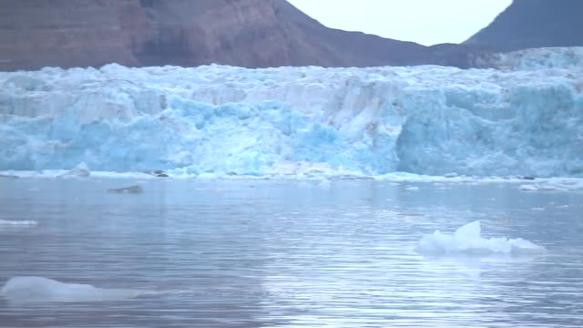 permanent sea ice melting at north pole norway svalbard ext various shots ice or snow covered mountains with grassland in foreground water lapping... - sea water bird stock videos & royalty-free footage