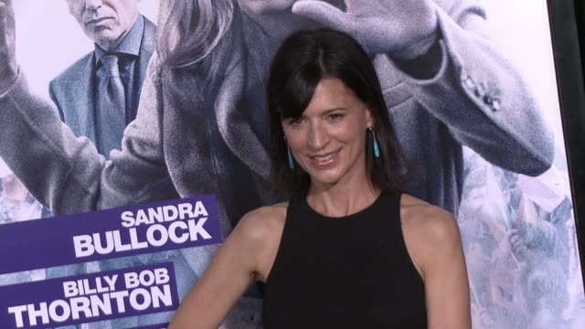 Perrey Reeves at the Our Brand Is Crisis Los Angeles Premiere at TCL Chinese Theatre on October 26 2015 in Hollywood California
