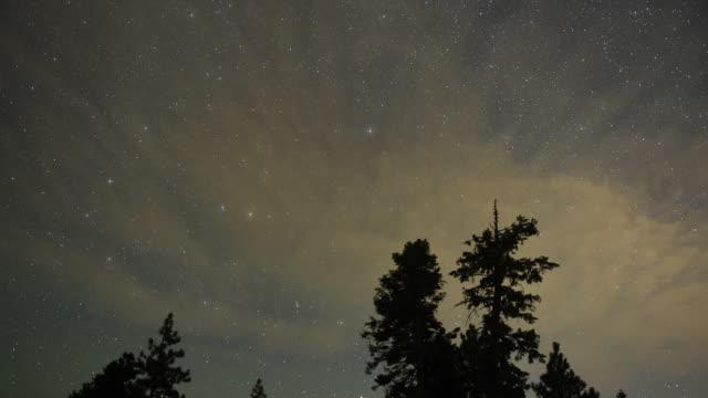 vídeos de stock, filmes e b-roll de a perseid meteor streaks across the sky above desert pine trees on august 13 2015 in the spring mountains national recreation area nevada the annual... - chuva de meteoros