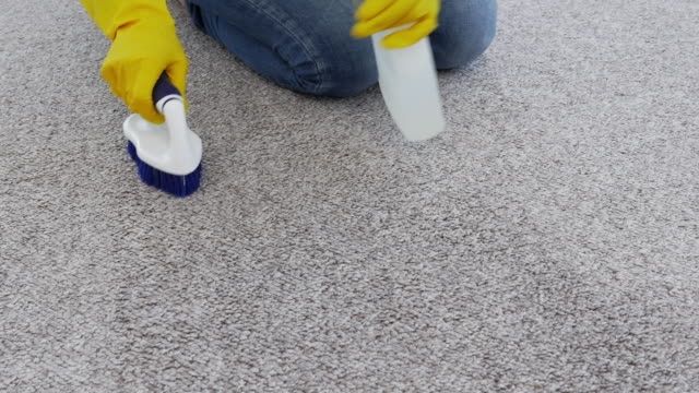 person cleaning carpet with brush and spray - washing up glove stock videos & royalty-free footage