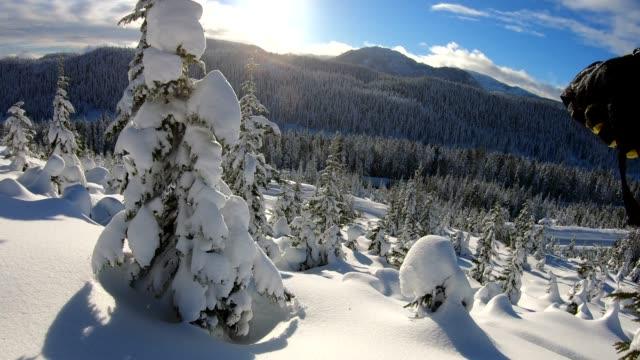 pov di persona che scende attraverso la neve profonda, nella foresta - bastoncino da sci video stock e b–roll