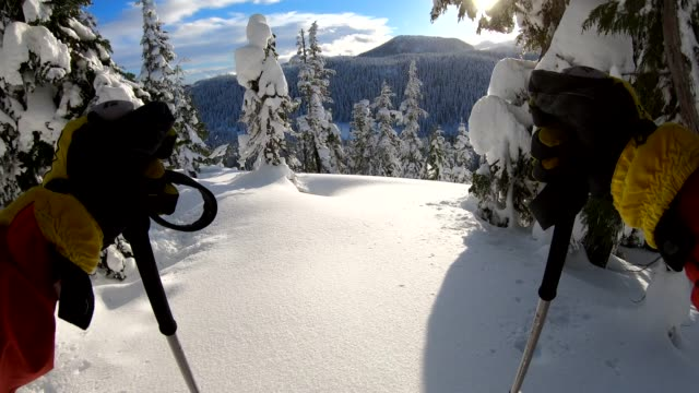 vídeos de stock e filmes b-roll de pov of person descending through deep snow, in forest - part of a series
