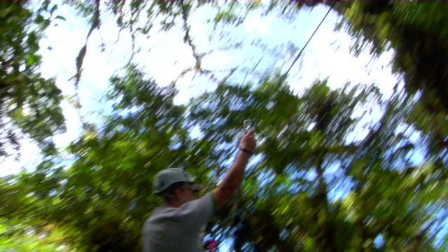ws ts pan person enjoying canopy tour, monteverde, costa rica - ロープスライダー点の映像素材/bロール