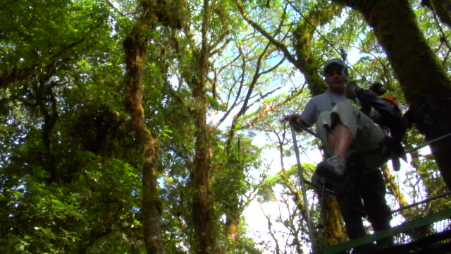ws ts pan person enjoying canopy tour, monteverde, costa rica - abseiling stock videos & royalty-free footage