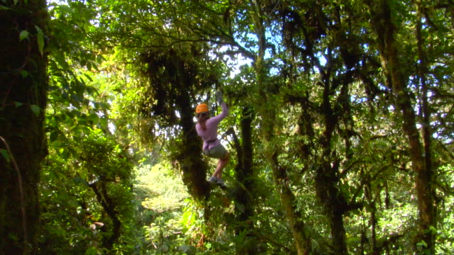 ws person enjoying canopy tour, monteverde, costa rica - copertura di alberi video stock e b–roll