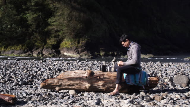 Person on log in scenic landscape