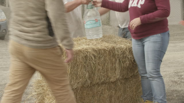 ensenada, chile - april 26, 2015: person picks up bale of hay people with dust masks in back of truck - hay truck stock videos & royalty-free footage