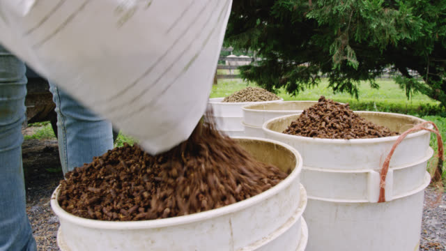 a person pours fiber horse food into five pound buckets on a farm - livestock stock videos & royalty-free footage