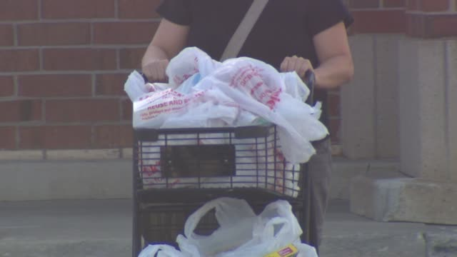wgn person pushing shopping cart full of groceries on october 10 2013 in chicago illinois - paper bag stock videos and b-roll footage