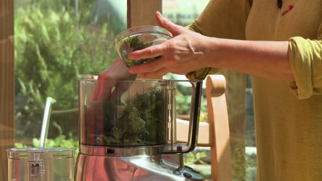 person putting herbs and leaves into blender - blattfiedern stock-videos und b-roll-filmmaterial